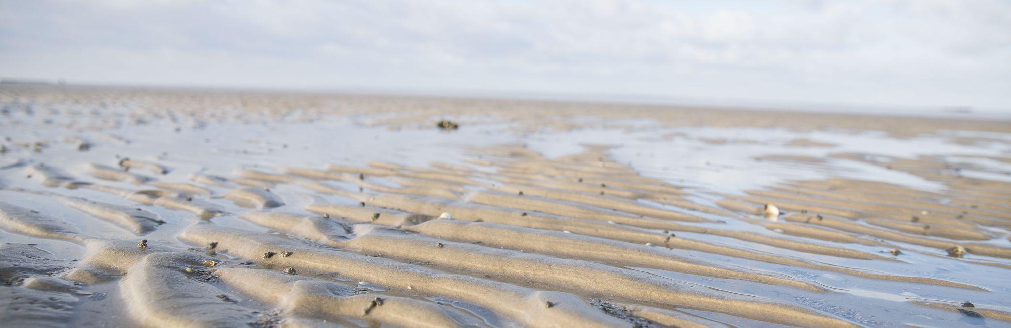 Wattenmeer - Das Watt vor Neuharlingersiel