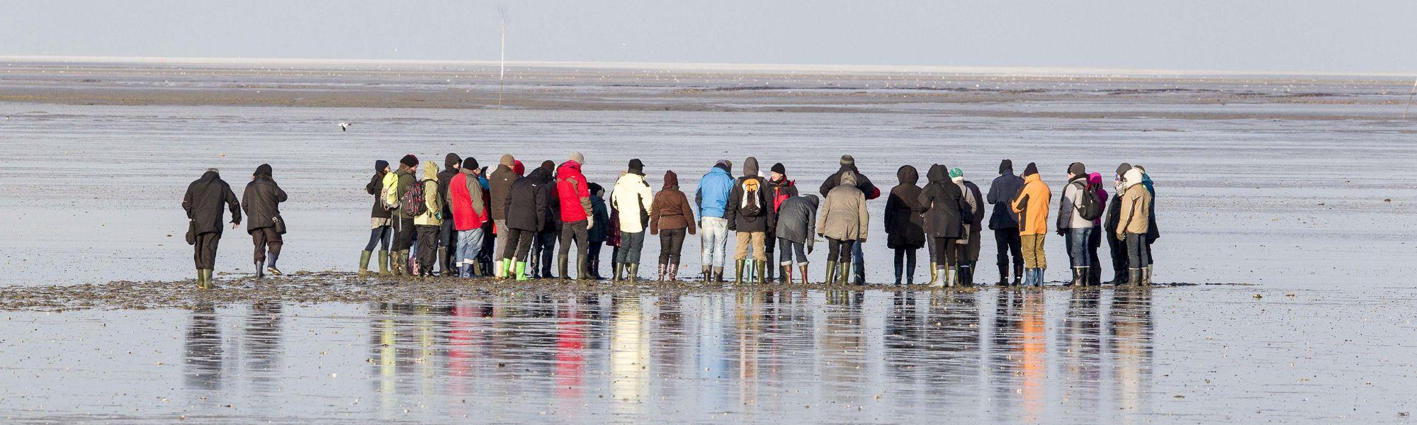 Arrangement Welterbe-Woche im Thalasso-Nordseeheilbad Neuharlingersiel