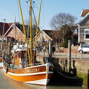 Krabbenkutter und Ausflugskutter Gorch Fock NEU 228 N