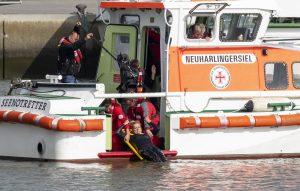 ZDF-Fernsehgarten on Tour Neuharlingersiel - 06.10.2019 - Kiwi lässt sich retten - Foto: ZDF/Sascha Baumann