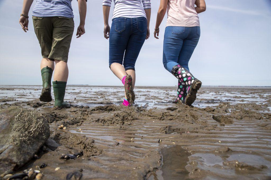 Das Wattenmeer ist ein Weltnaturerbe. Eine Auszeichnung der UNESCO, die nur außergewöhnlichen Naturphänomenen mit Bedeutung für die ganze Welt verliehen wird