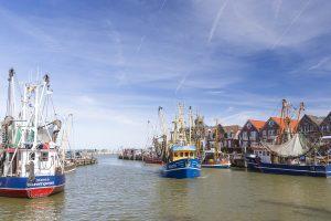Das Fischerdorf Neuharlingersiel wurde vor über 300 Jahren erstmals urkundlich erwähnt. Seit dieser Zeit hat sich das Bild des Hafens stetig gewandelt. Aber er ist und bleibt, was er immer war: das Herzstück Neuharlingersiels und Fenster zum Meer.