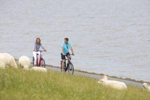 Eine Radtour am Deich ist ideal für einen entspannten Urlaub