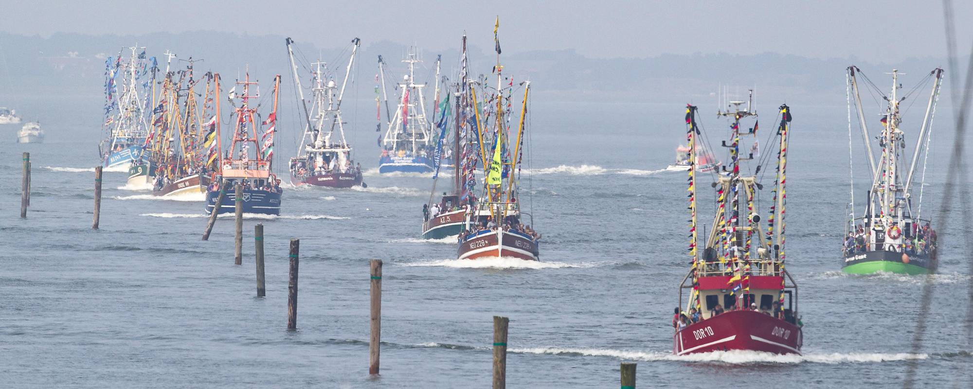 Kutterregatta - Regatta der Krabbenkutter